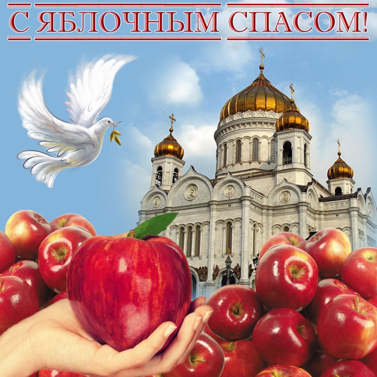 Здоровья, спас яблочный поздравления картинки