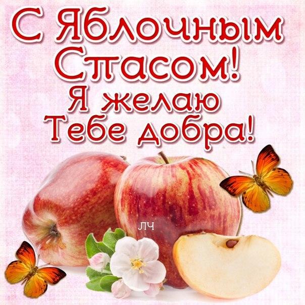 Смешные картинки с яблочным спасом, тариф красивая пара