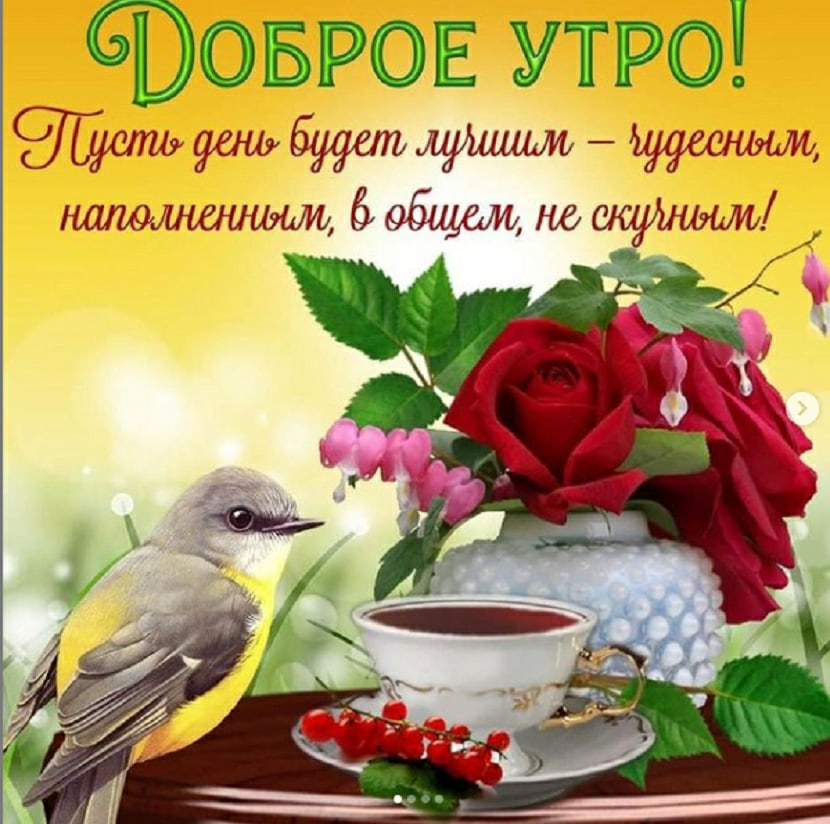 открытки со стихами доброго утра является третьей распространённости