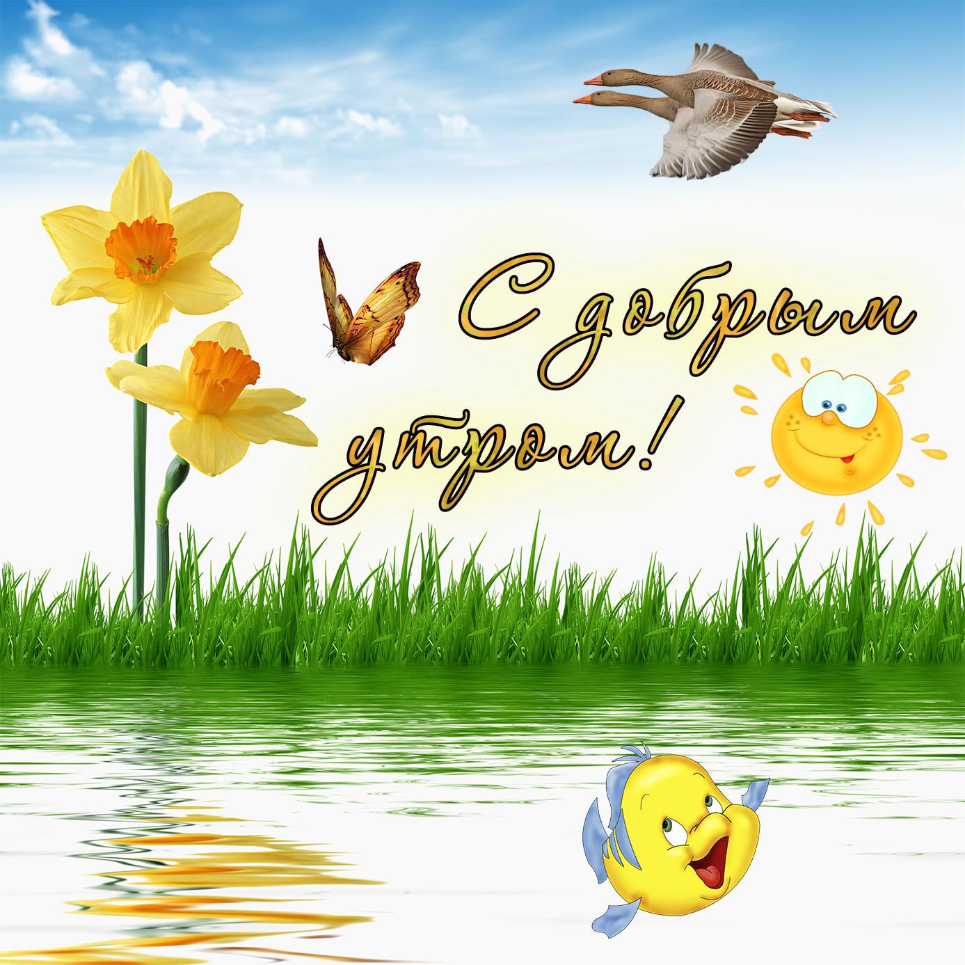 Водка, поздравление с добрым утром открытка подругам