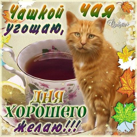 http://lovezka.ru/morning/39.jpg