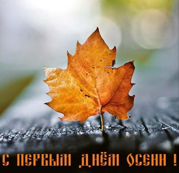 Днем, октябрь открытка прикольная
