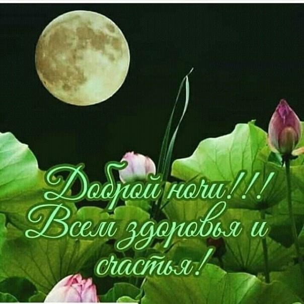 Спокойной ночи необычная открытка