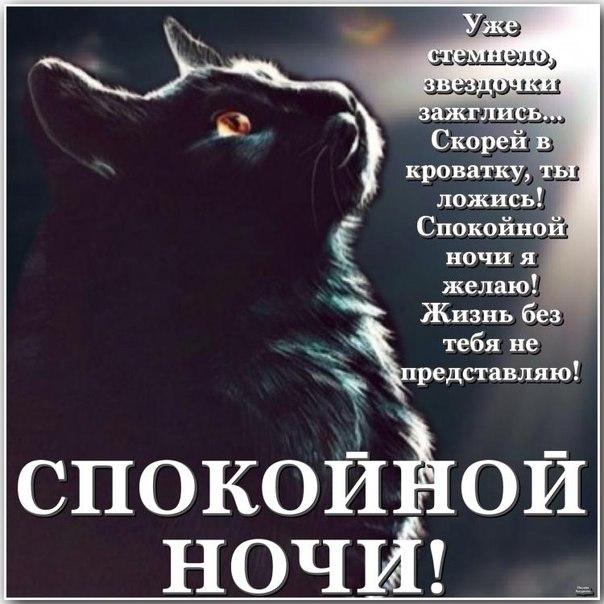http://lovezka.ru/night/2.jpg