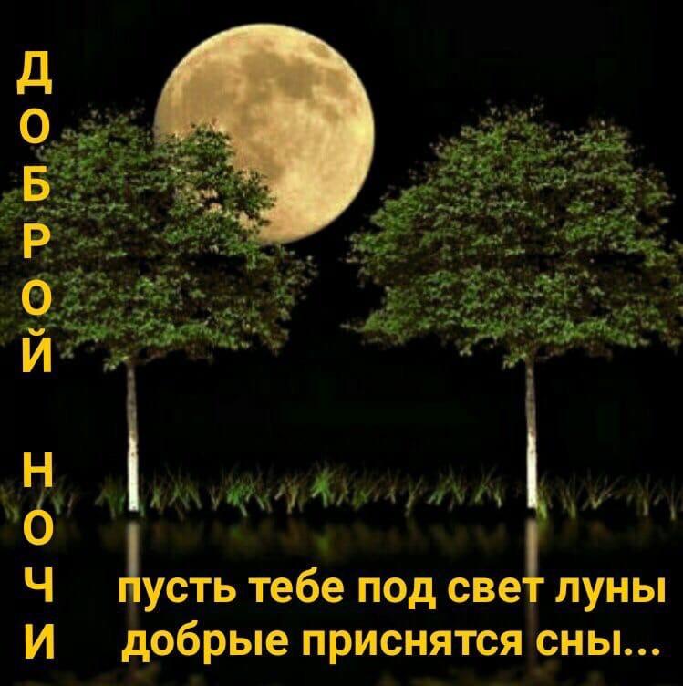 Чудесные картинки с пожеланием спокойной ночи