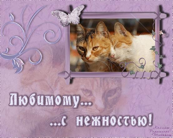 Ические признания в любви открытки