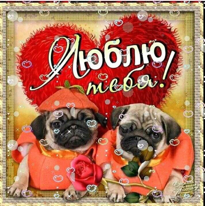 открытки для любимой фото