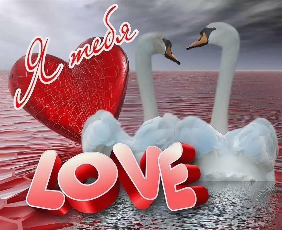 Веселые картинки с признаниями в любви